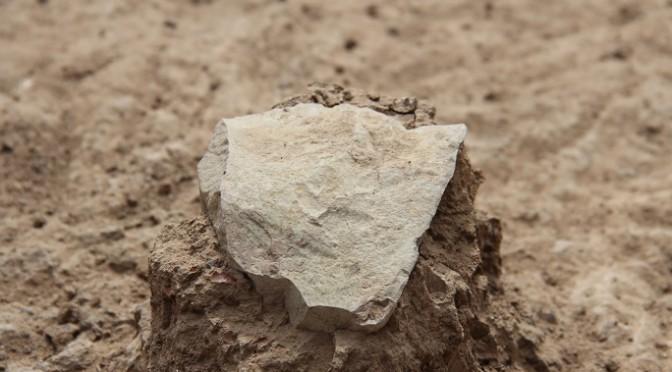 Des outils en pierre taillée vieux de 3,3 millions d'années